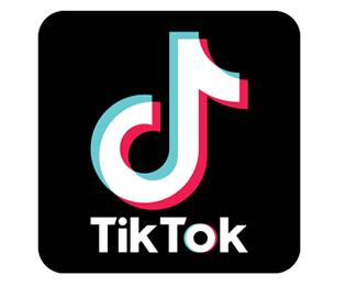 北京字节跳动科技有限公司 旗下海外短视频TikTok