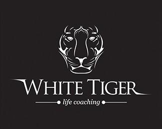 白虎生活教练