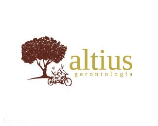 双人单车ALTIUS