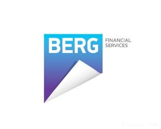 金融服务公司BERG