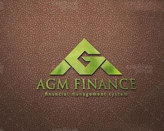 财务公司的股东周年大会